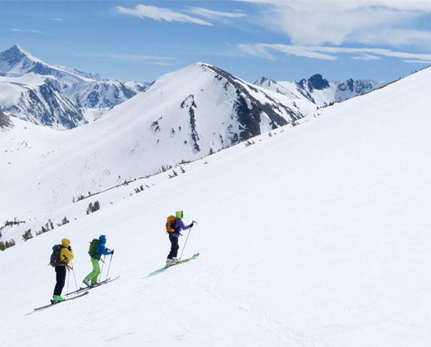 Sierra Backcountry Snowcat Skiing