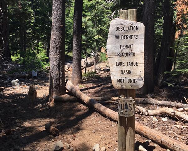 Backpacking Desolation Wilderness