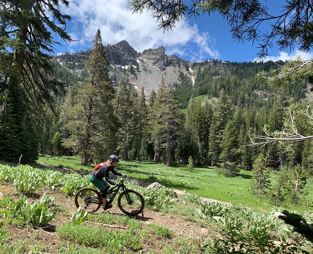 Tahoe Trails Update